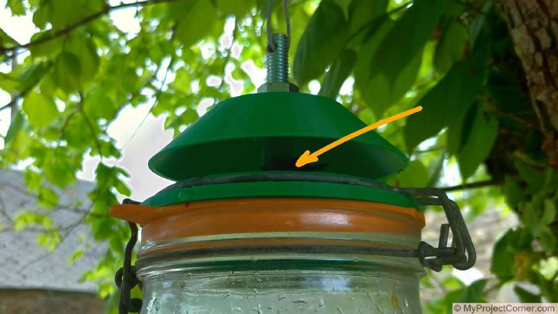 Addition of chicken poo to help attract flies